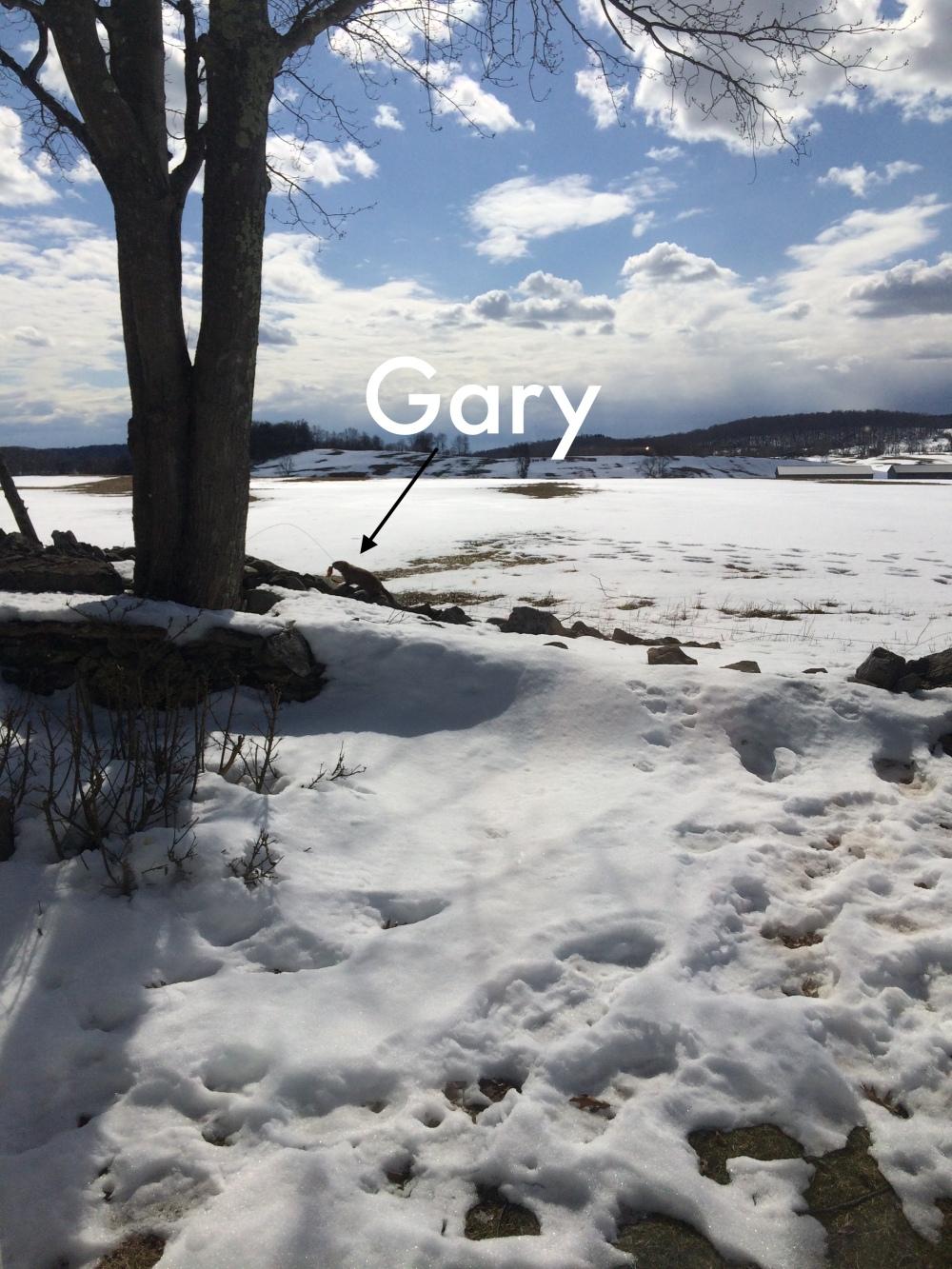 Gary Day 1.JPG